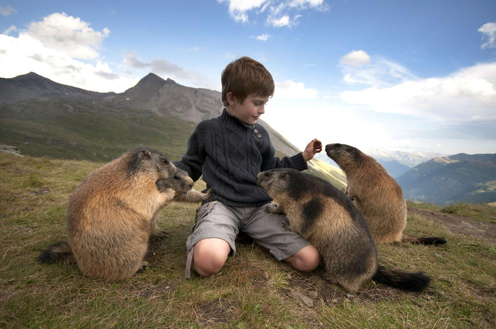 boy-with-beavers