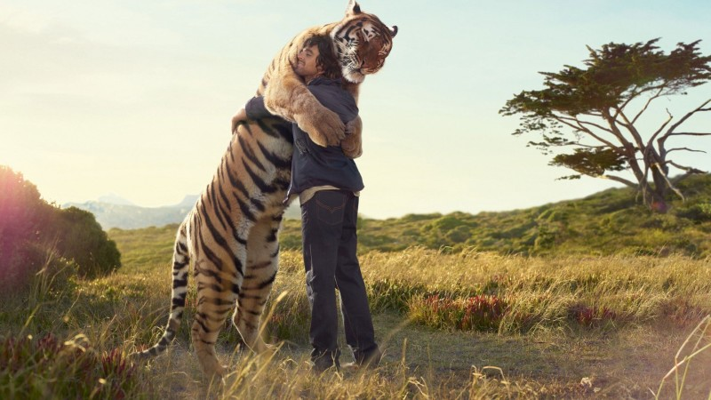tiger-hugs-man