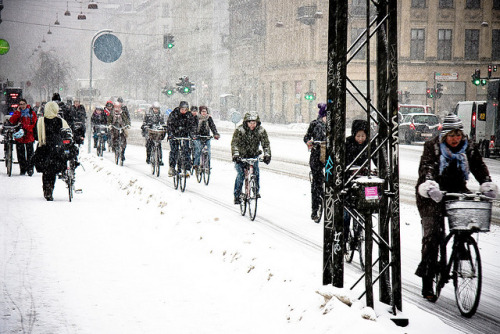 winter-biking